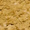JBL Krill – корм для всех видов тропических пресноводных и морских рыб