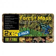 Hagen Exo Terra «Forest Moss» - наполнитель для террариума / мох