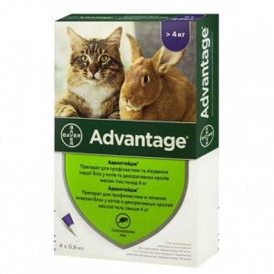 Адвантейдж® — уничтожение блох на целый месяц для кошек и котят: Bayer Advantage - капли на холку: по хорошей цене   Petplus
