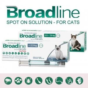 Broadline Merial Spot On Cat (Бродлайн Спот-Он) - капли против гельминтов, блох и клещей у кошек