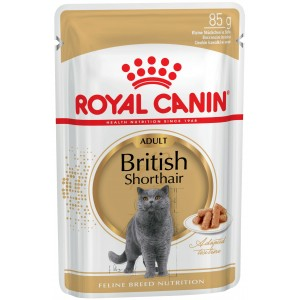 Royal Canin British Shorthair Adult Wet - влажный корм для Британской короткошерстной кошки / паучи