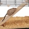Ferplast Cage Karat - стеклянная клетка для хомяков и мышей
