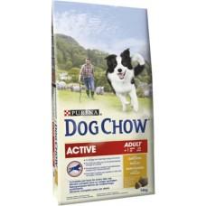 Dog Chow Active Chicken & Rice - для активных собак