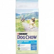 Dog Chow Large Breed Puppy with Turkey - корм для щенков крупных пород с индейкой