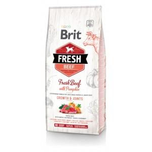Brit Fresh Beef with Pumpkin Puppy Large Bones  Joints - корм для щенков крупных пород / говядина