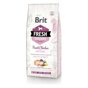 Brit Fresh Chicken with Potato Puppy Healthy Growth - корм для щенков / курица