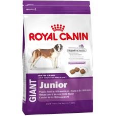 Royal Canin Giant Junior - корм для щенков гигантских пород в возрасте от 8 до 18 месяцев