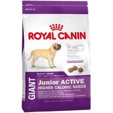 Royal Canin Giant Junior Active - корм для активных щенков старше 8 месяцев