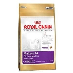 Royal Canin Maltese Мальтийская болонка взрослая