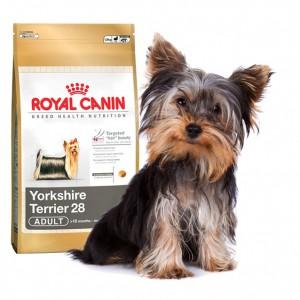 Royal Canin Yorkshire Terrier Adult (Йоркширский Терьер взрослый)