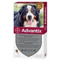 Bayer Advantix (Адвантикс) - средства защиты от блох и клещей для собак (от 40 до 60 кг)