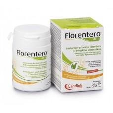 Candioli Florentero ACT - препарат для нормализации желудочно-кишечного тракта