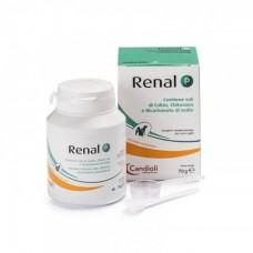 Candioli Renal P - препарат при заболеваниях почек в порошке