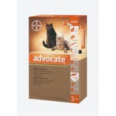 Bayer Advocate (Адвокат) - cредства защиты для кошек (до 4 кг)