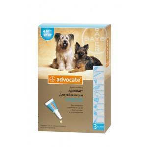 Средства защиты Bayer Advocate (Адвокат), капли для собак весом от 4 до 10 кг