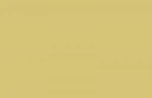 Bon Appetit - линейка сухих кормов для кошек и собак всех пород и возрастов【Oasis-Shadrin Group】Бон Аппетит