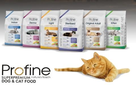 Profine Cat