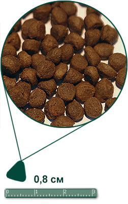 Arden Grange (Арден Грендж) Adult Cat Salmon & Potato - беззерновой корм для взрослых кошек / лосось с картофелем