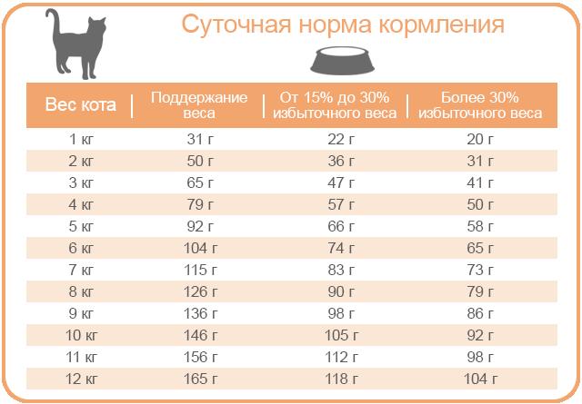 EQUILIBRIO VETERINARY | Лечебный корм для котов страдающих от ожирения и сахарного диабета
