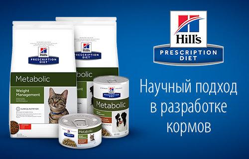 лечебные корма для кошек от Хиллс