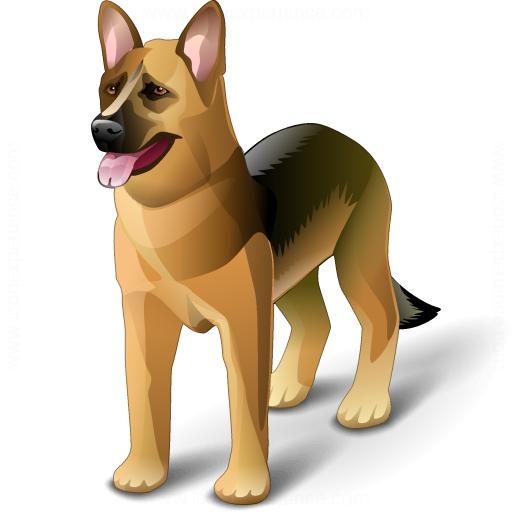 корм для собак - купить собачий корм