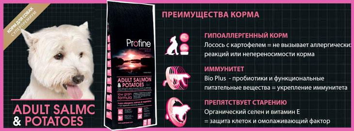 Profine Adult Salmon & Potatoes