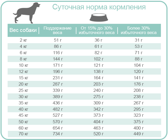 EQUILIBRIO VETERINARY | Ллечебный корм для собак, страдающих от ожирения, сахарного диабета