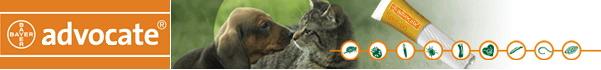 Адвокат® cпот-он для собак - золотой стандарт контроля паразитов у собак