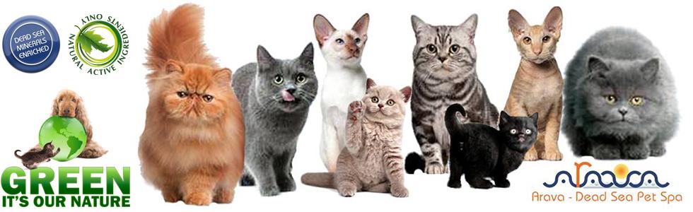 Arava (Израиль) - Терапевтическая черная грязь для кошек и котят