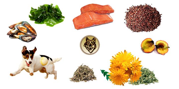 Gelenkkraft Konzentrat Pellets питание для суставов